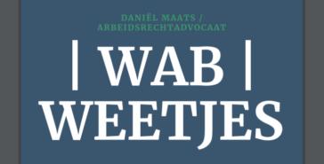 Cover Wab Weetjes E-Book